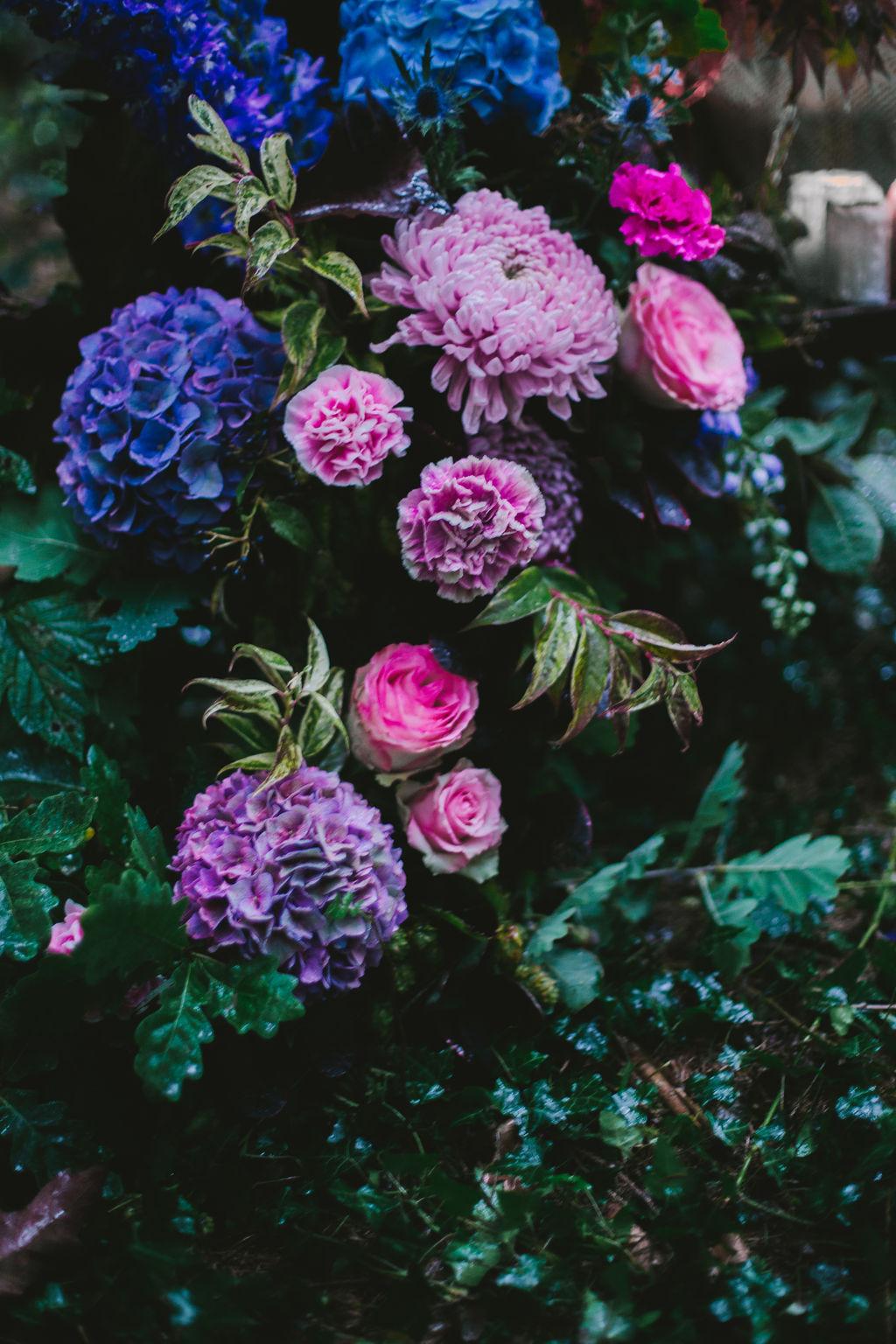 Fanny_myard_photography_ELIXIR-63